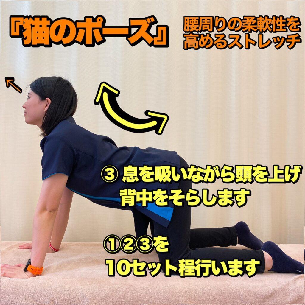 生理痛 腰痛 セルフケア ストレッチ